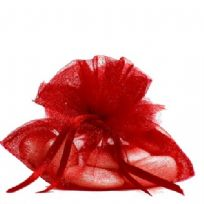 Pack Of 10 Red Petal Top Organza Pouches